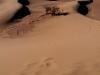 Campement du désert